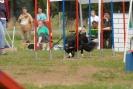 Agilityturnier am 30.06.2007 _6