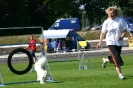 Bundessiegerprüfung Agility in Haunstetten am 22.06.2008
