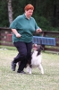Bundessiegerprüfung Obedience 05.07.2009