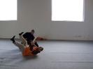 DiscDog Seminar am 05./06.04.2008