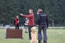 Obedience-Prüfung am 24./25.10.2009